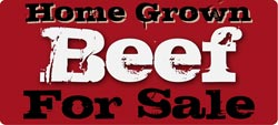 Home Grown Beef for Sale